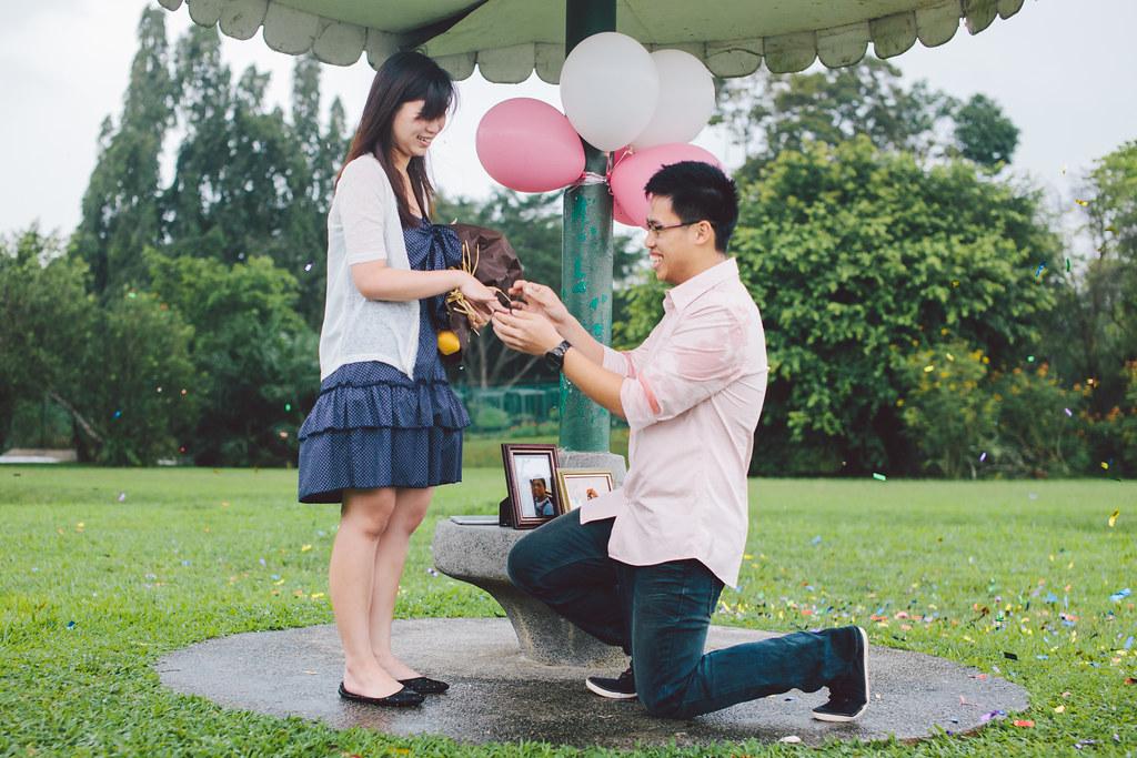 Kiat - Chin Fang (Proposal)-29