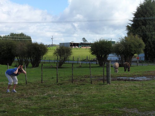 NZ - 2009-10 - North Island Roadtrip-185
