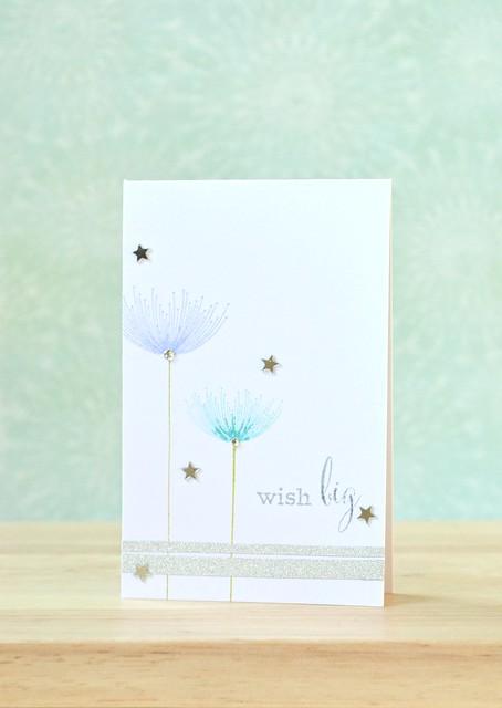 wish big