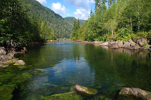 Ash River flows out of Oshinow Lake, Oshinow Lake Campground, Strathcona Provincial Park, Central Vancouver Island, British Columbia, Canada