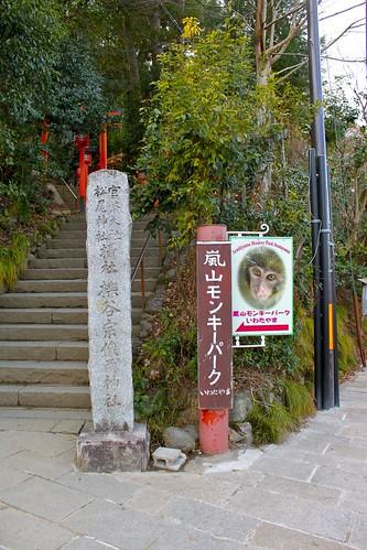 嵐山モンキーパーク_1