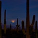 Moonrise over Tucson (20mm / 120mm; 1/1.3; f/18)