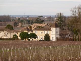 Viñedos de Saint Emilion (Aquitania, Francia)