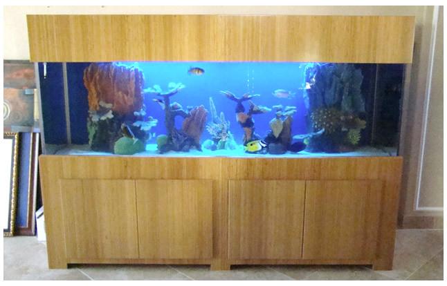 Bamboo Fish Tank 02