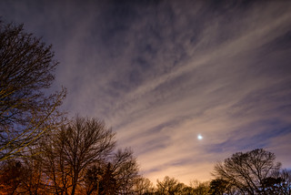 A Winters Night Sky