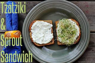 tzatziki & sprout sandwich