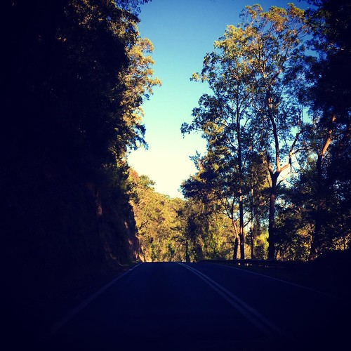 Going up to Dorrigo for the last time to sort out Uncles belongings....... #boggycreek #dorrigo #dorrigomountain