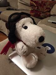 teddy bear(0.0), footwear(0.0), shoe(0.0), giant panda(0.0), bear(0.0), textile(1.0), plush(1.0), stuffed toy(1.0), toy(1.0),