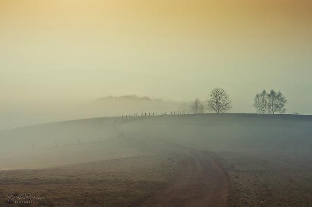 Hidden in the fog - explore-
