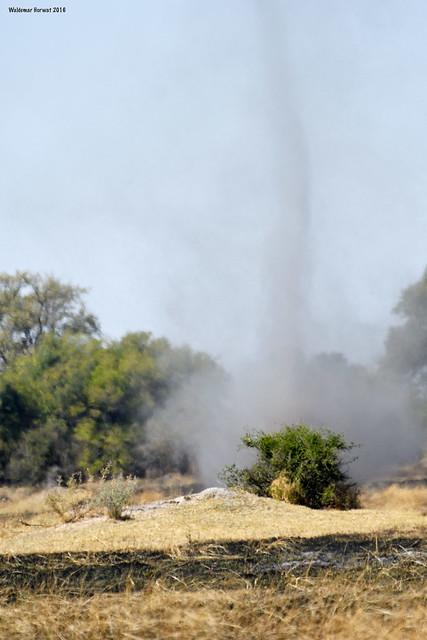 Botswana Dust Devil