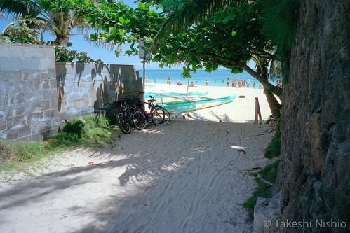 眩いビーチ / Dazzling beach