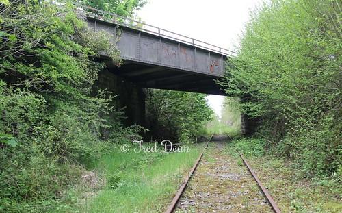 Railway Bridge (OBG81).