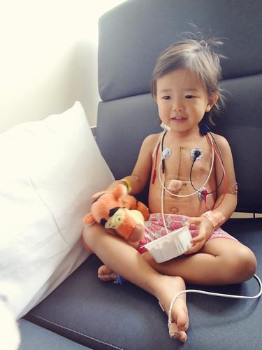 Phebe - Heart Surgery
