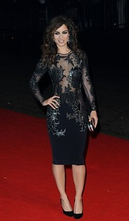 Berenice Marlohe Sheer Dress Celebrity Style Women's Fashion