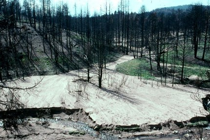 Heavy rains after a wildfire caused this heavy sediment deposit (Photo Credit: R. H. Meade, U.S. Geological Survey)