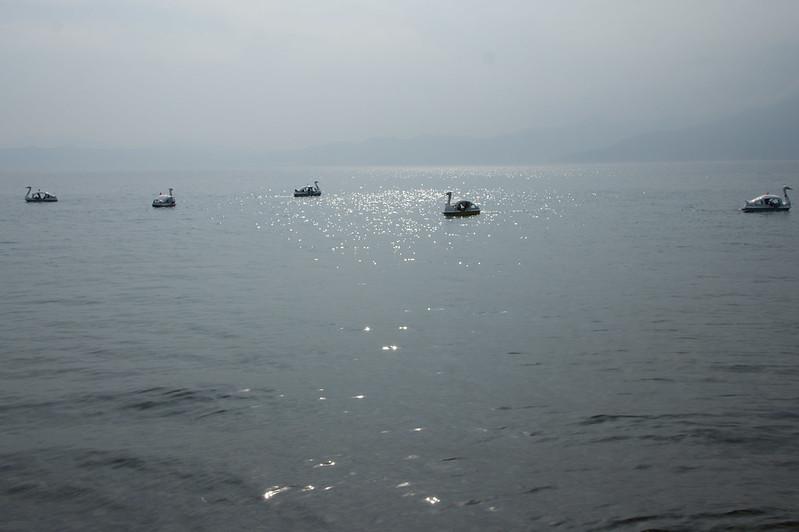 Swan boat / スワンボート