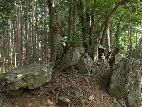 20130817-18_本仁田山と日の出山