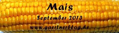 Garten-Koch-Event September 2013: Mais [30.09.2013]