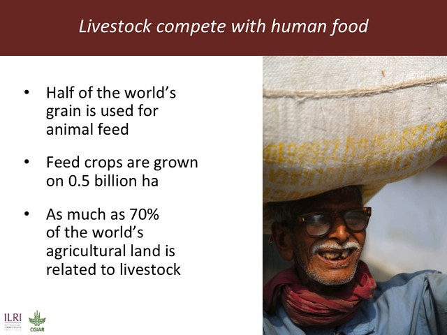 Feeding the World in 2050: Slide 23