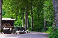 Wanderweg Altberg