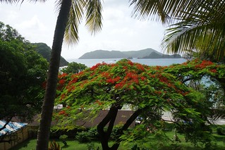 Vista das ilhas Goat Island e Little Tobago