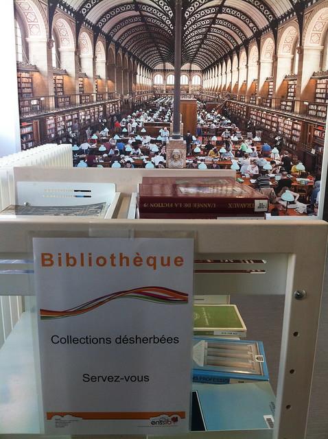 bibliothèque de l'Enssib, ça désherbe aussi