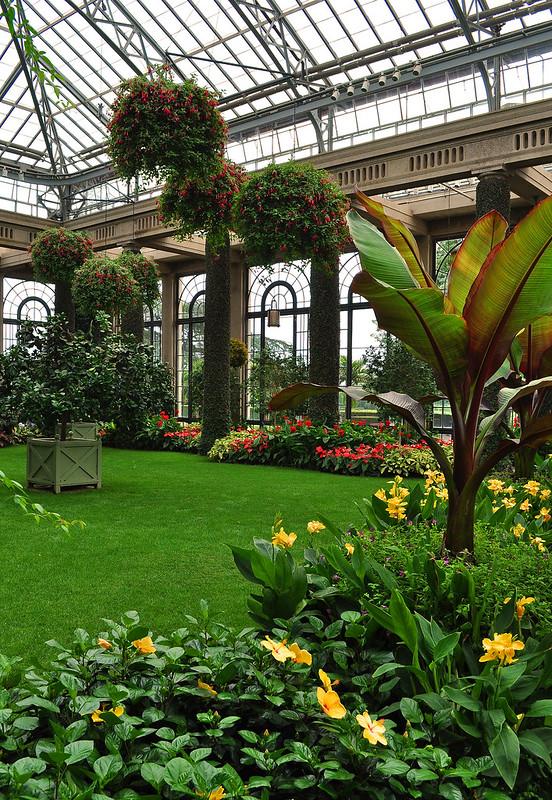 Conservatory - Orangery (3)