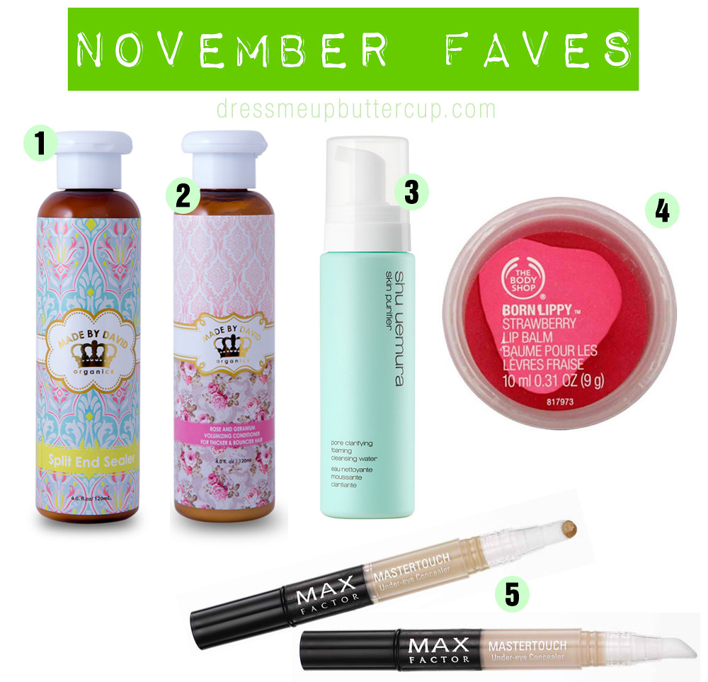 Top 5 November Monthly Beauty Favorites