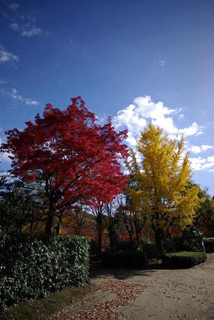 2013秋葉大阪城