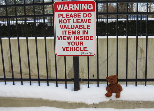 or little Teddy alone in the parking lot....