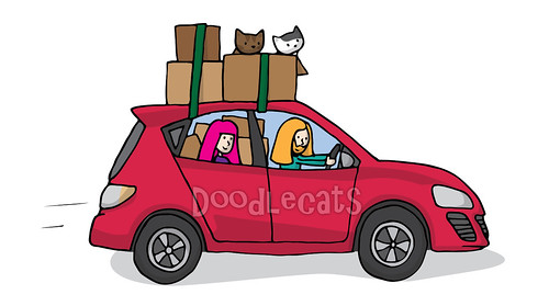 Moving with cats - Doodlecats