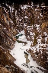 Snowshoeing at Siffleur Falls