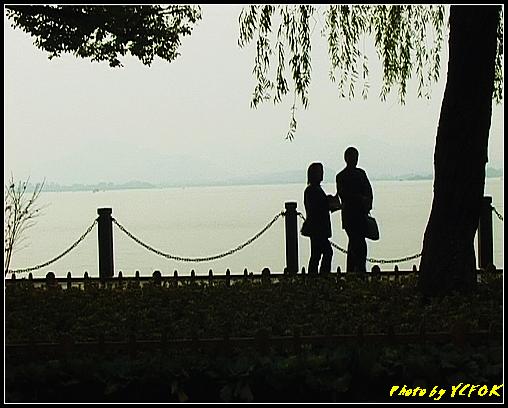 杭州 西湖 (其他景點) - 634 (湖濱路的湖畔)