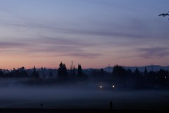Klaus Naujok posted a photo:	Another day with ground-fog over the baseball fields. See the man and his dog at the edge of the fog? Photo taken with the Konica Minolta AF DT 18–70mm @ 70mm (105mm FF).