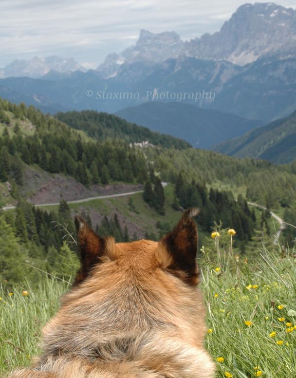 Tosca ammira il panorama