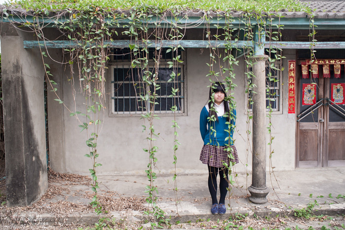 台南私藏景點--學甲寮平和里 X 蜀葵、小麥、羊群、老厝群 (27)