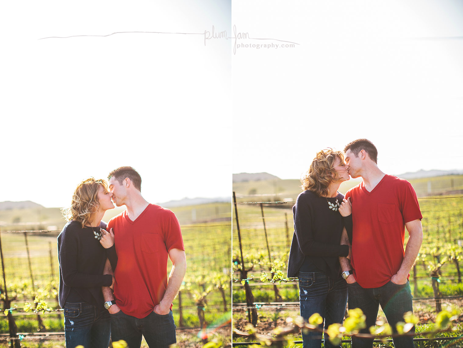 RebeccaMike-Engagement-vineyard-shellbeach-california-plumjamphotography-05
