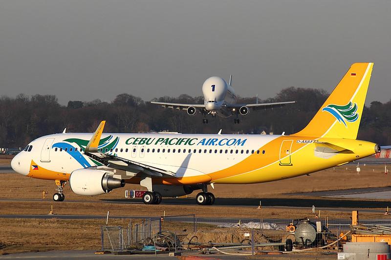 Cebu Pacific - A320 - D-AXAF (1)