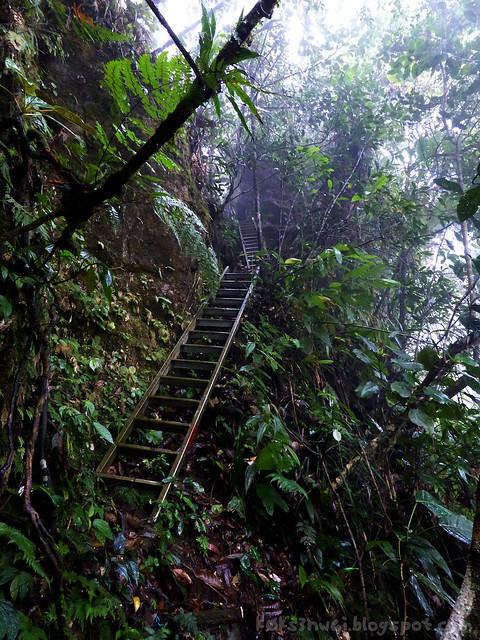 Penrissen Trek Ladders