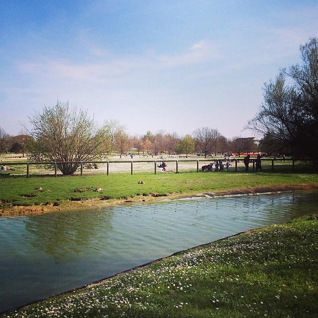 Domenica al parco #giriingiro #viaggioinromagna #forli