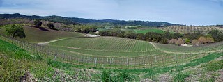 2014-03 Opolo Vineyards hikes-08-09-10 panorama | by fjkehljr