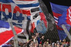 Steaua-FC Vaslui, atmosfera 1