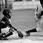 Summer Baseball