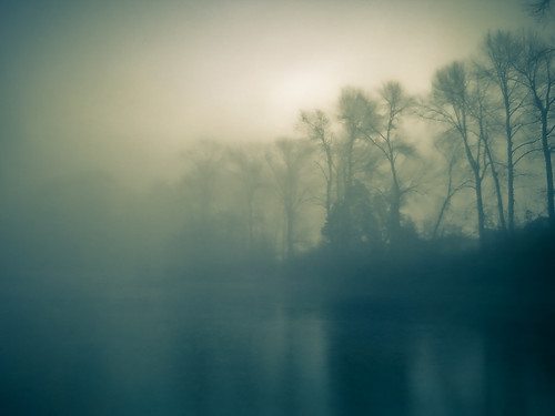 seattle trees sky sun sunlight mist lake weather fog digital landscape outdoors washington outdoor foggy location wa hogan mikehogan seattlewashington icanseemyhousefromhere