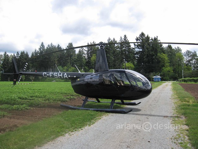 Sky Helicopter tour above Langley