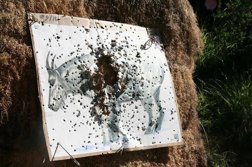 Balboa Archery (9)