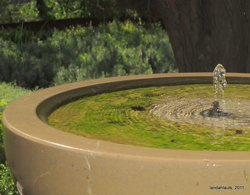 Jardín Nazarí