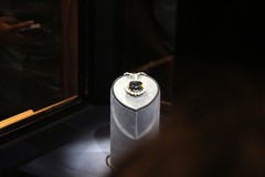 MuseumofNaturalHistory-1