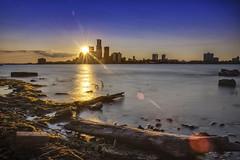 Detroit Skyline Sunflare