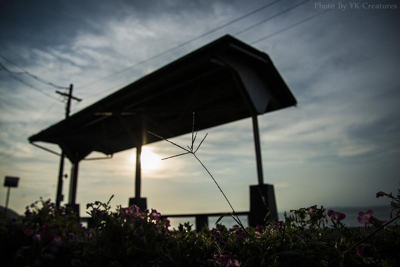 2013/08/30 下灘駅